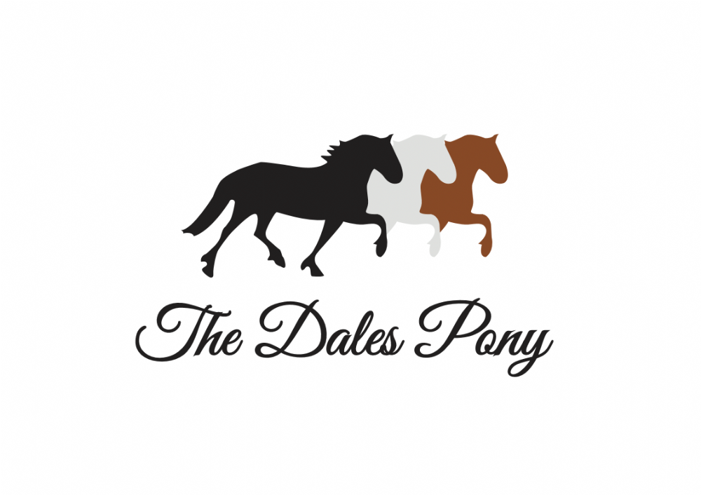 Dales Pony Adults Hoody